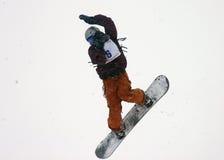22雪板 库存图片