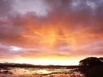 在天空风雨如磐的沼泽之上 库存图片