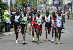 22nd belgrade maraton Arkivbild
