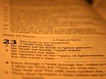 23 salmo II Imagenes de archivo