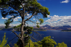 23 wysp elaphitische Obrazy Royalty Free