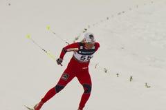 24个冠军2月fis北欧奥斯陆滑雪世界 库存照片