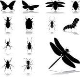 24 έντομα εικονιδίων που τίθενται Στοκ Φωτογραφία