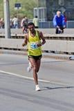 24. Belgrad-Marathon 2011. Lizenzfreies Stockfoto