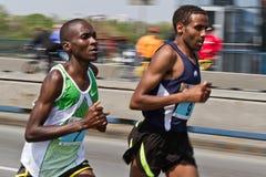 24. Belgrad-Marathon 2011. Lizenzfreie Stockfotografie