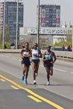 24. Belgrad-Marathon 2011. Stockbilder
