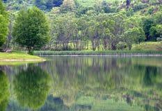 24 natury Zdjęcie Royalty Free