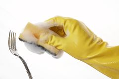 24 ręce rękawiczkowej gumy Fotografia Stock