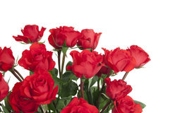 24 Roses in Glass Vase Royalty Free Stock Image