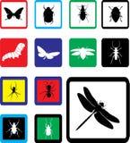 24b被设置的图标昆虫 免版税库存照片