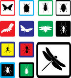 установленные насекомые икон 24b Стоковое фото RF