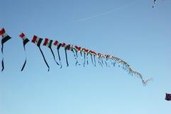 250 cervi volanti sul singolo filetto Fotografia Stock Libera da Diritti