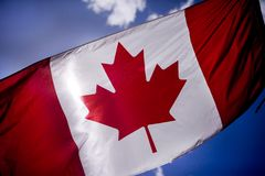 253 hizo andrajos el indicador canadiense Fotos de archivo