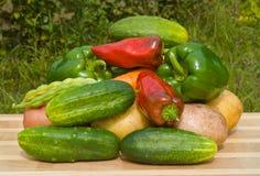 26棵蔬菜 免版税库存图片