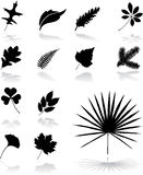 26片图标叶子设置了 库存图片