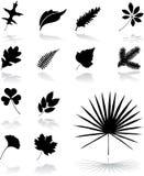 26 установленных листьев икон Стоковые Изображения