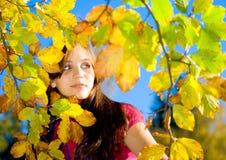 26 jesień piękno Obrazy Royalty Free