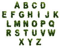 26 lettres dans l'alphabet Photos stock