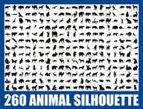 260 animal silhouette +  file Royalty Free Stock Photo