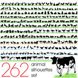 262 animal silhouettes set Stock Photo