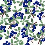 266 ornament bezszwowy royalty ilustracja