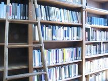 梯子图书馆 免版税库存图片