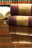 27 lagliga böcker arkivbild