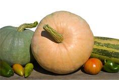 28棵蔬菜 免版税库存照片