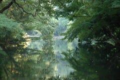 浪漫的湖 免版税库存照片