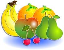 混合的果子 库存例证
