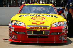29 2008 harvick nascar sp3 Royaltyfri Foto