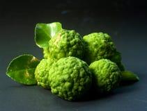 29 owoców cytrusowych Obraz Royalty Free
