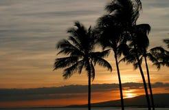 生动夏威夷的日落 免版税库存照片