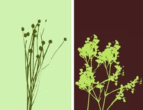 2flowers - illustrazione Fotografie Stock Libere da Diritti