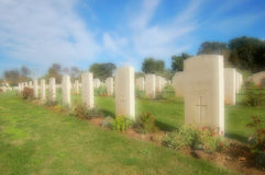 2nd War cemetery in Syracuse. (Sicily Royalty Free Stock Image