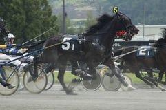 3上马具的赛马比赛 免版税库存照片