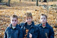 3个兄弟 库存图片