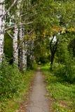 3个公园路径 库存照片