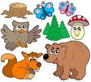 3个动物收集森林 库存照片