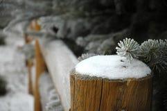 3个国家(地区)冬天 库存照片