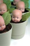 3个婴孩生长 库存照片
