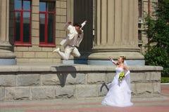 3个新娘绑架 库存图片