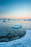 3个早晨冬天 免版税图库摄影