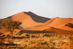 3个沙丘沙子 库存照片
