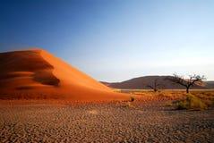 3个沙丘namib 免版税库存照片