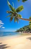 3个海滩praslin塞舌尔群岛 库存照片