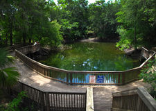 3个漏洞河suwannee游泳区域 免版税图库摄影