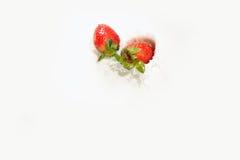 3个牛奶系列草莓 免版税库存照片