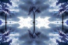 3个结构树 库存图片