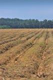 3个耕种地产系列 免版税库存照片